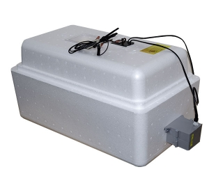 бытовой инкубатор «несушка» на 36 яиц, автоматический переворот, аналоговый терморегулятор, с цифровой индикацией, 12В